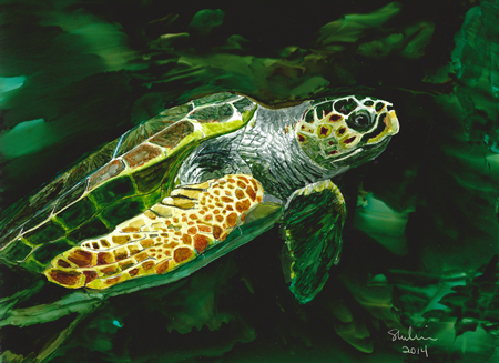 Williams_Sheryl__Sea_Turtle_450wX327h
